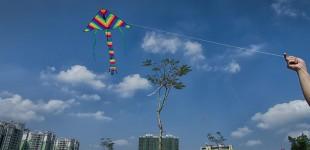 Kite Hippodrome