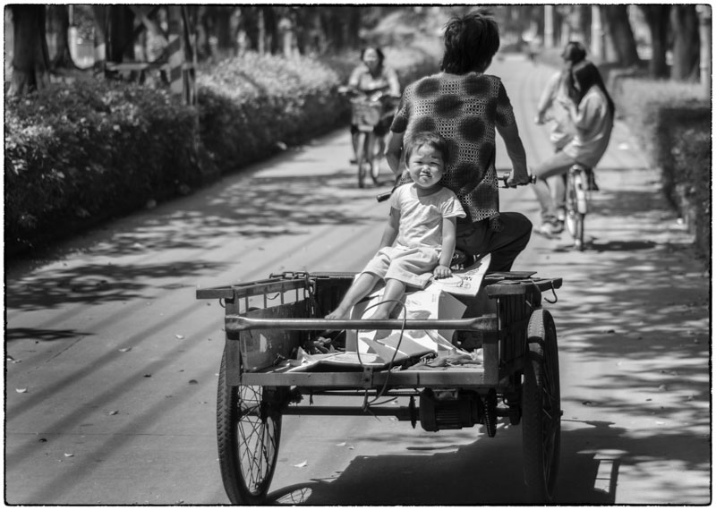 Kid in Cart-2