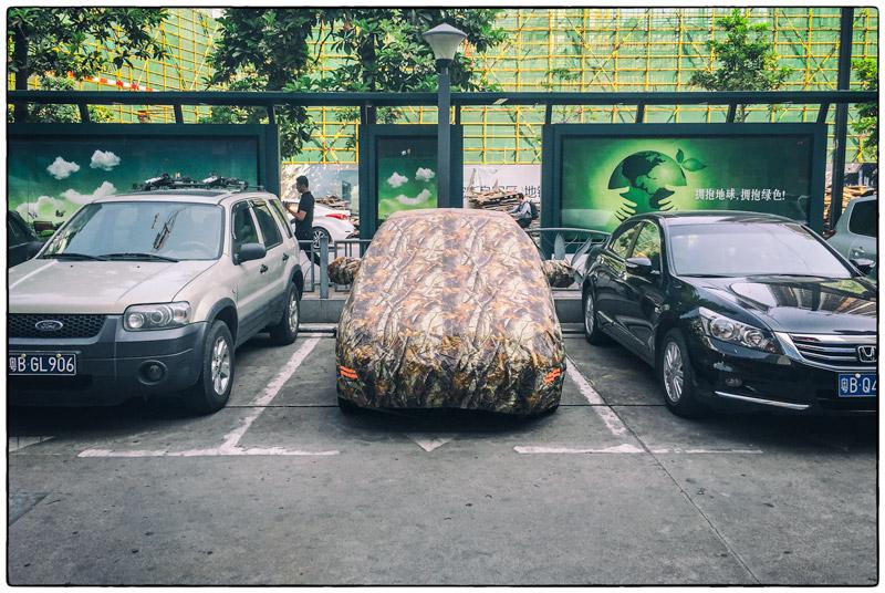 Camo-Car