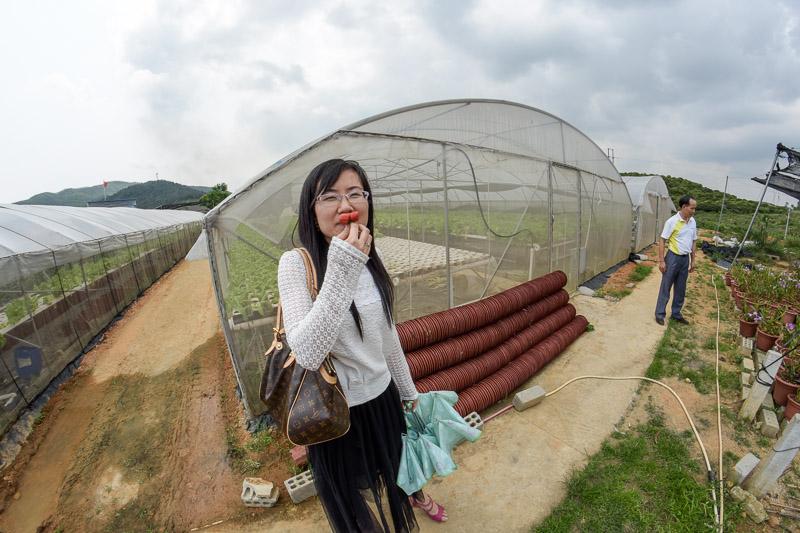 Organic Farm-11