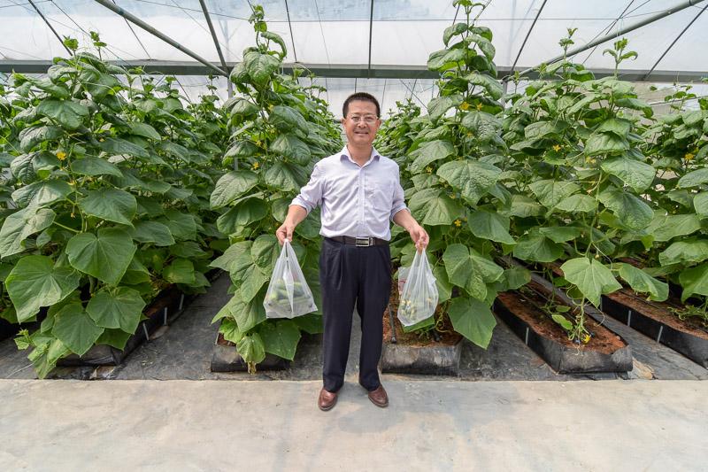 Organic Farm-14