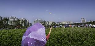 Yangjiang Kite Festival 10.15