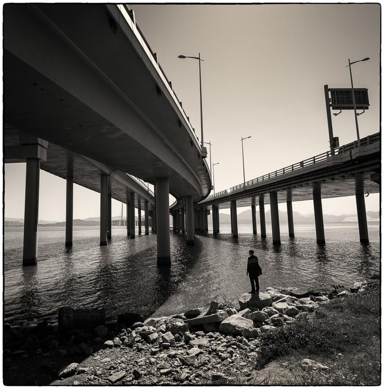 Under Shenzhen Bay Bridge3