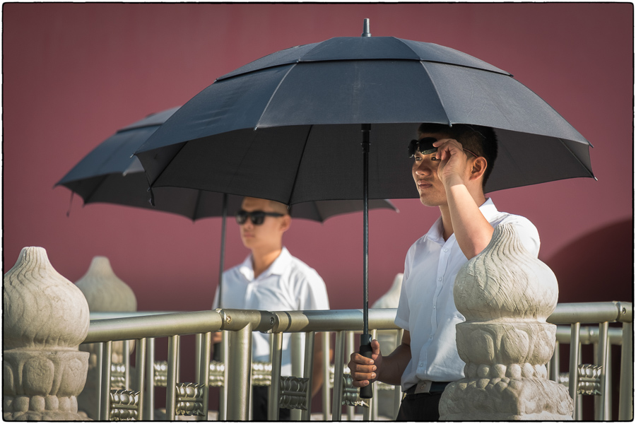 Forbidden City Sunglass Guards