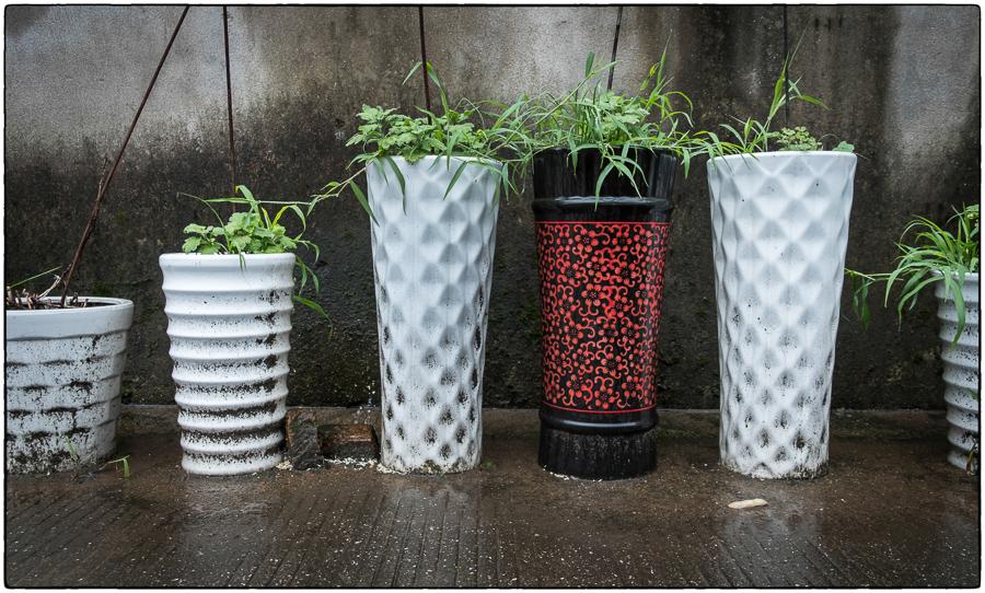 Ningbo Planters
