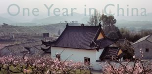 Analog | One Year in China