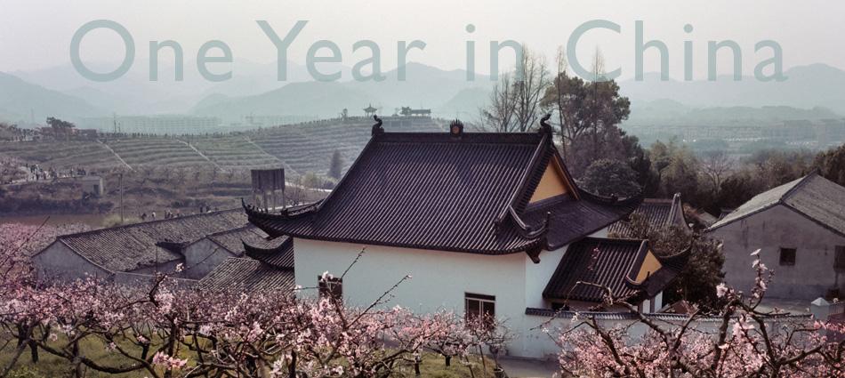 Analog | One Year in China